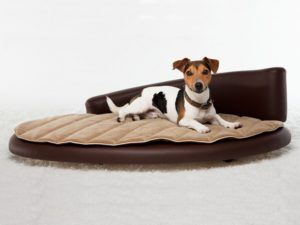 Luxus Hundebett Cozy